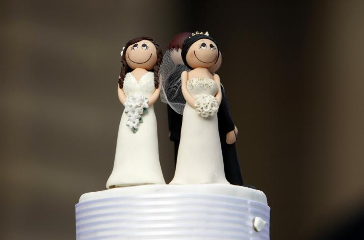 Two bride figurines adorn the top of a wedding cake during an illegal same-sex wedding ceremony in central Melbourne August 1, 2009.