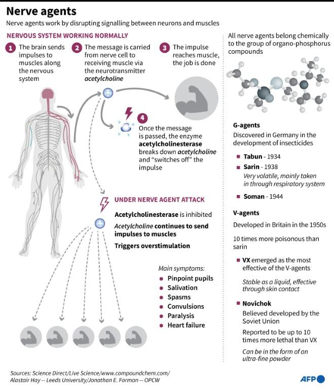Factfile on nerve agents
