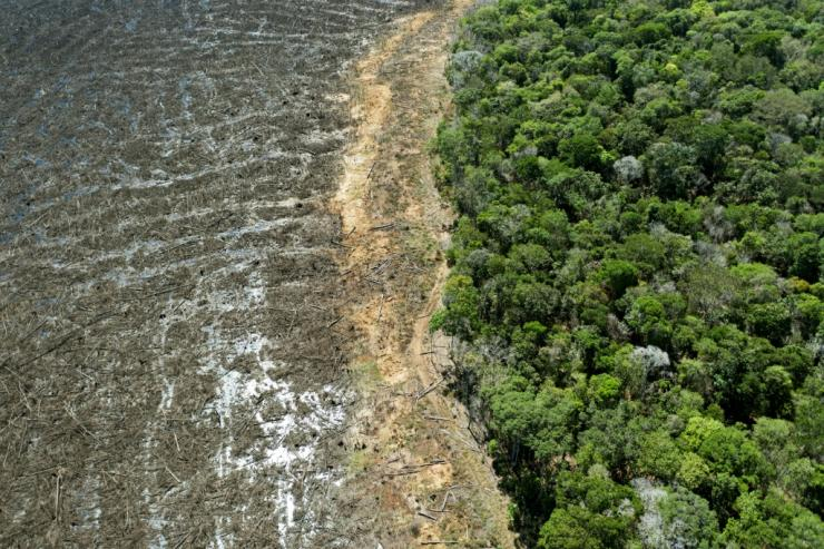 This file photo taken on August 7, 2020 shows a deforested area of Brazil's Amazon rainforest in Mato Grosso state; EU officials say distrust over President Jair Bolsonaro's treatment of the Amazon is holding up a major trade deal