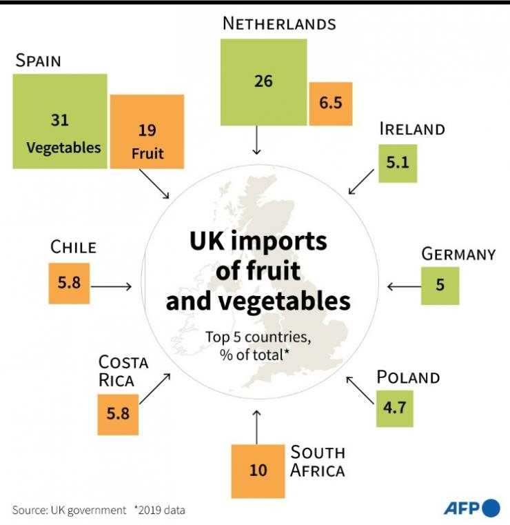 UK fruit and vegetables imports by top five countries in percent for 2019.