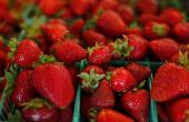 Needles in strawberry contamination: More brands confirmed to be affected